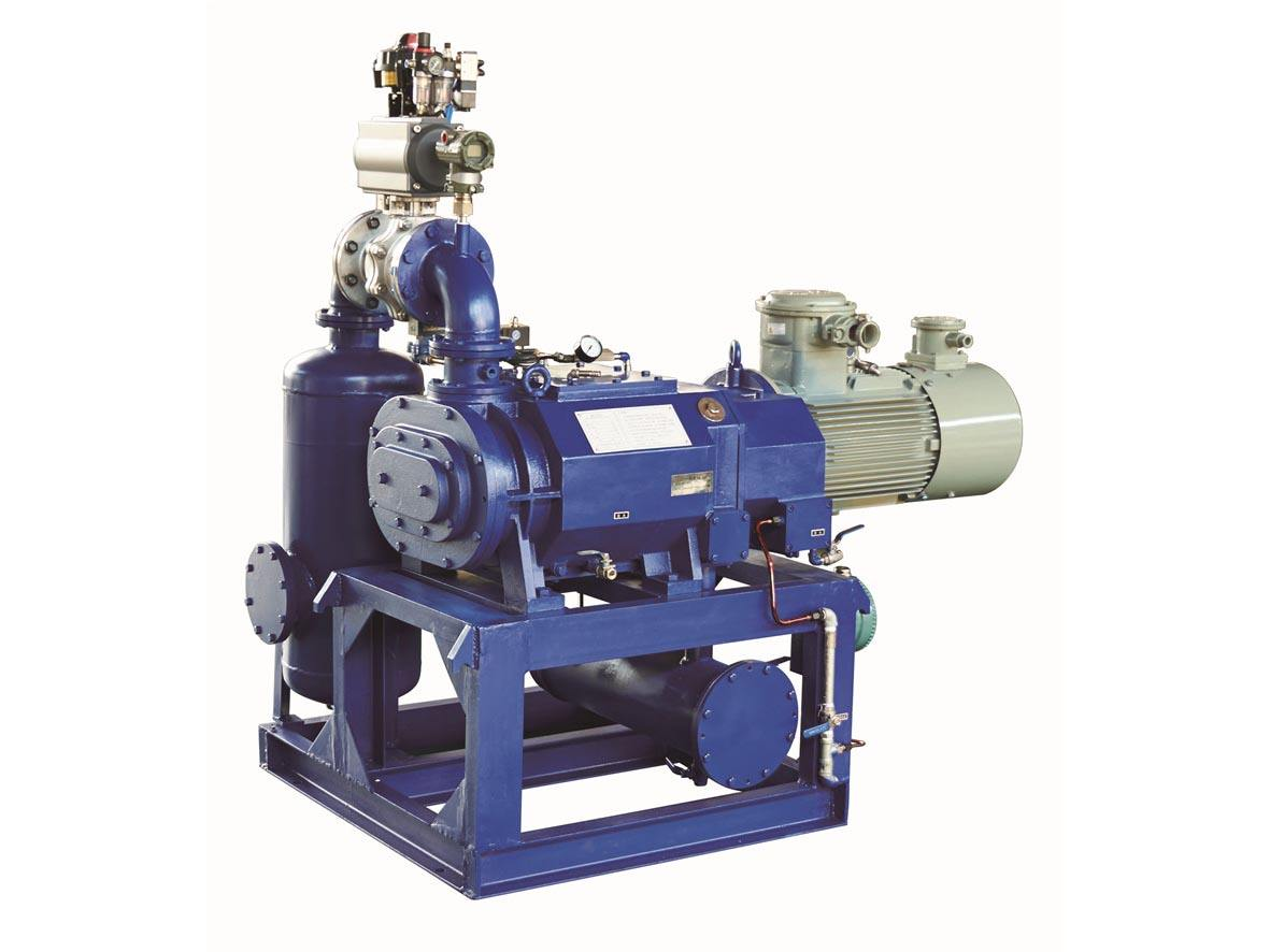 干式真空泵